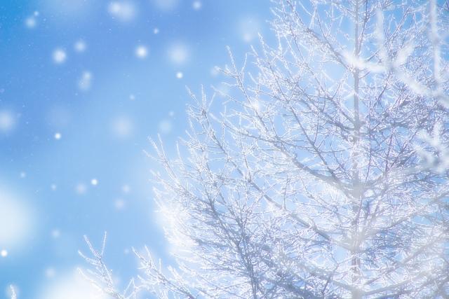 【股関節痛対策】真冬の冷えに立ち向かうためには体を温めるのがおススメ